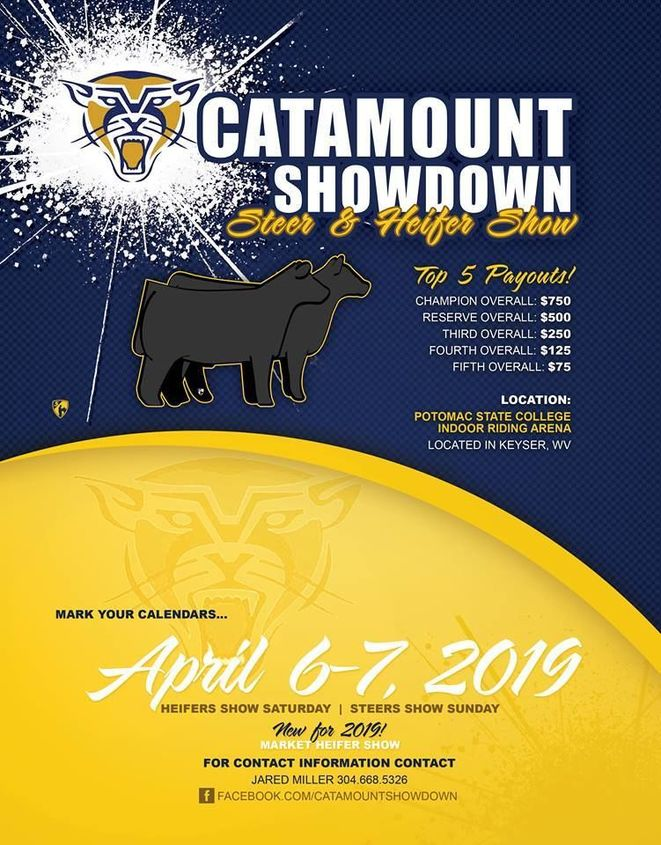 Catamount Showdown Flyer