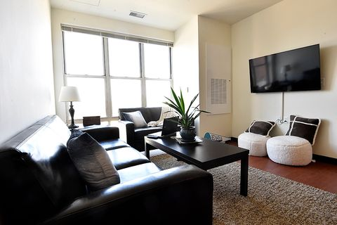 bright living room with plant on coffee table